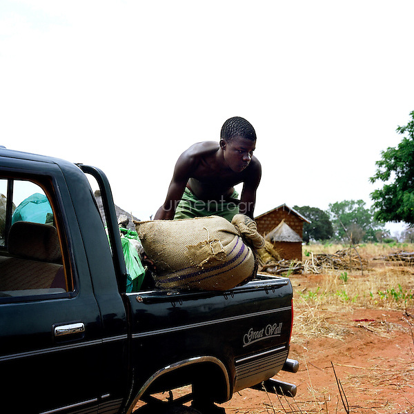 A young boy carrying a bag from the back of a truck.