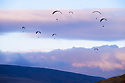 "30/11/14<br /> <br /> Paragliders take to the skies above Mam Tor, near Castleton, in The Derbyshire Peak District this afternoon. One pilot said that the unseasonably warm day made for flying condotiond that were ""almost epic"".<br /> <br /> <br /> <br /> ***ANY UK EDITORIAL PRINT USE WILL ATTRACT A MINIMUM FEE OF £130. THIS IS STRICTLY A MINIMUM. USUAL SPACE-RATES WILL APPLY TO IMAGES THAT WOULD NORMALLY ATTRACT A HIGHER FEE . PRICE FOR WEB USE WILL BE NEGOTIATED SEPARATELY***<br /> <br /> <br /> All Rights Reserved - F Stop Press. www.fstoppress.com. Tel: +44 (0)1335 300098"