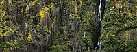 Franz Josef Glacier valley wall covered with moss and vegetation and waterfalls, Westland Tai Poutini National Park, South Westland, West Coast, UNESCO World Heritage Area, New Zealand, NZ