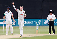 Peter Siddle celebrates taking the wicket of Jeetan Patel during Essex CCC vs Warwickshire CCC, Specsavers County Championship Division 1 Cricket at The Cloudfm County Ground on 16th July 2019