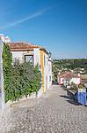 Portugal, Obidos, Cobblestone Street in the Historic Cente