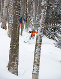 Vermont, Stowe Resort, Seth Morse and Kristie Brown Lovell skiing down Chin Clip
