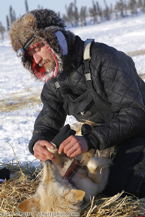 "Friday March 9, 2012  Nicholas Petit puts boots on his dog ""Daffodil"" at the half-way checkpoint at Cripple.   Iditarod 2012."