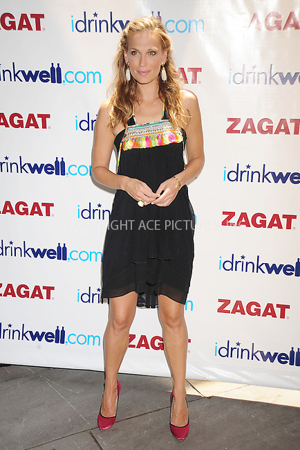 WWW.ACEPIXS.COM . . . . . ....June 10 2008, New York City....Model and actress Molly Sims kicks off the 2008 National Survey Of American Cocktail Culture by making some cocktails on June 10, 2008 at the Bryant Park Grill in New York....Please byline: KRISTIN CALLAHAN - ACEPIXS.COM.. . . . . . ..Ace Pictures, Inc:  ..(646) 769 0430..e-mail: info@acepixs.com..web: http://www.acepixs.com