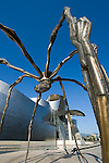 Spider in the guggenheim museum, Bilbao, Spain