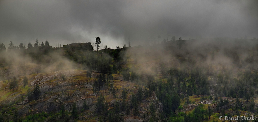 Landscape Scenic Art Photograph of misty clouds clinging to the trees, and the mountains in the south Okanagan Valley, in British Columbia, Canada.