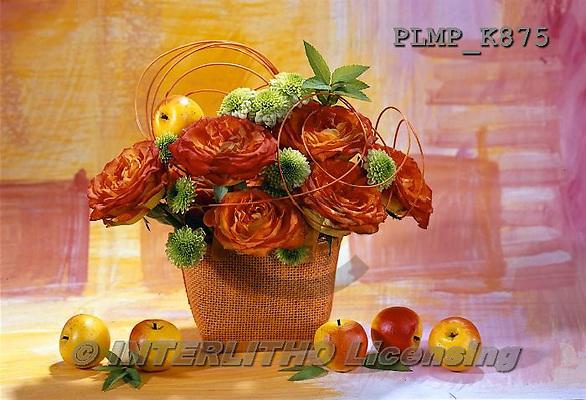 Marek, FLOWERS, BLUMEN, FLORES, photos+++++,PLMPK875,#f#