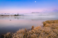 Yellowstone National Park, WY: Morning fog at dawn on Swan Lake with moon set