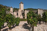 Europe/Europe/France/Midi-Pyrénées/46/Lot/Cahors: La vallée du Lot et le Pont Valentré et le Jardin d'ivresse qui fait partie des jardins secrets de Cahors