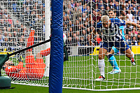 Hugo Lloris of Tottenham Hotspurr left injures himself after Neal Maupay of Brighton and Hove Albion scores the first goalnh during Brighton & Hove Albion vs Tottenham Hotspur, Premier League Football at the American Express Community Stadium on 5th October 2019