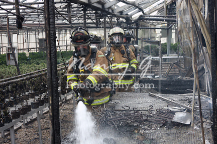 Firefighters working a scene to douse a fire in a greenhouse.  Burnt plants on the tables