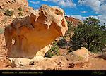 Snakehead Rock, Capitol Reef National Park, Utah