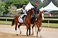 HOT SPRINGS, AR - APRIL 13:  Fantasy Stakes at Oaklawn Park on April 13, 2018 in Hot Springs, Arkansas. #7 Princess Warrior with jockey Ramon A. Vazquez (Photo by Ted McClenning/Eclipse Sportswire/Getty Images)