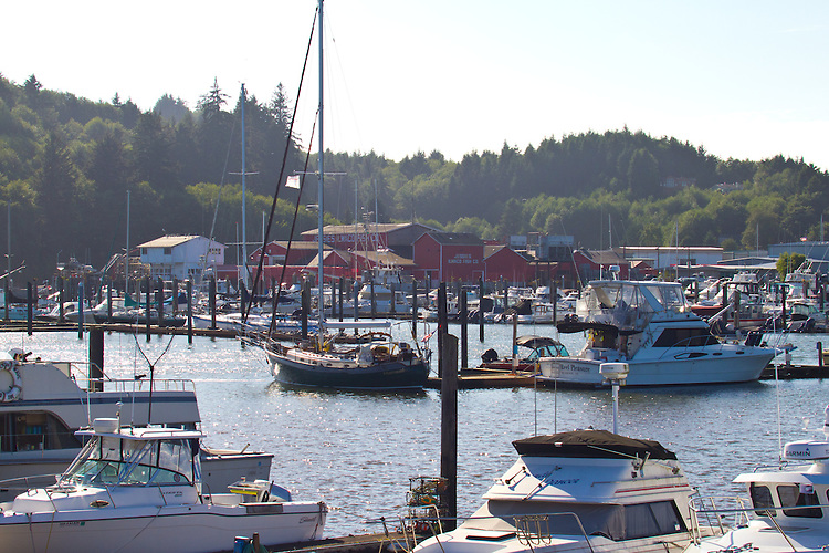 Ilwaco, boat harbor, fishing boats, yachts, fish processing, Columbia River, Pacific Ocean, Pacific County, Washington Coast, Washington State, Pacific Northwest, United States, mouth of the Columbia River, coastal towns,