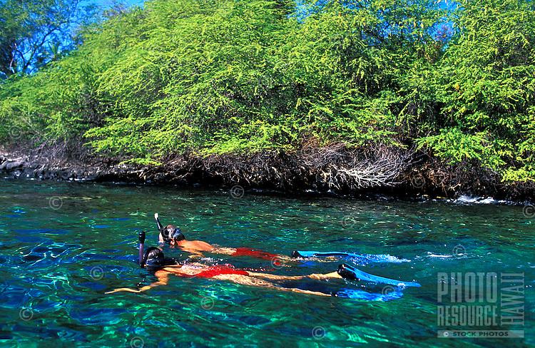A couple enjoying the snorkeling near Captain Cook Monument , Kealakekua Bay on the Big Island of Hawaii.