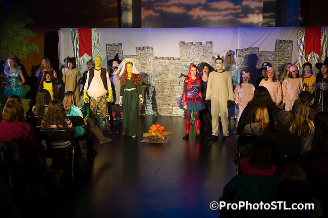 Sherk presented by STAGES St. Louis at Kent Center for Theatre Arts in Chesterfield, MO on Feb 13, 2015.