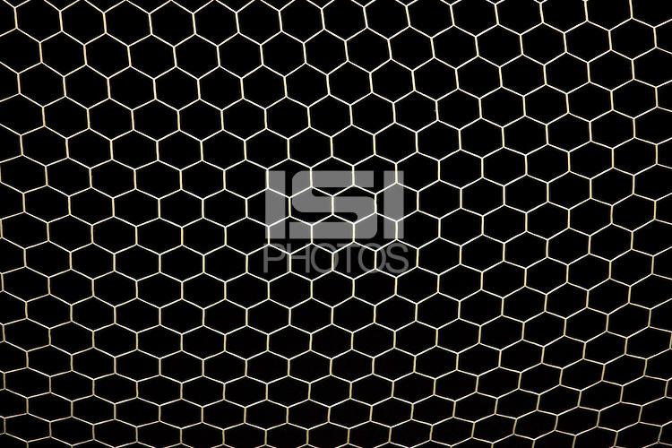 Goal Net