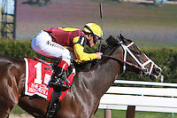 Broadway's Alibi with Javier Castellano wins the Grade III Comely Stakes for 3-year odl fillies, going 1 mile, at Aqueduct.  TrainerTodd Pletcherr.  Owner E. Paul Robsham Stables