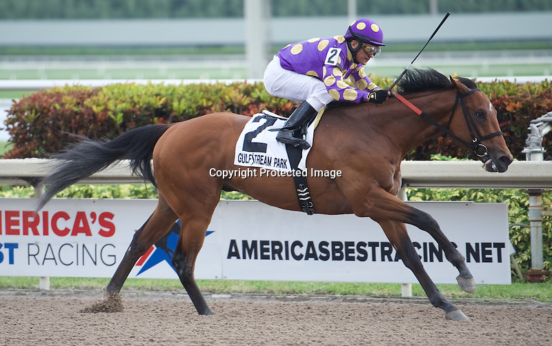 January 2, 2016: Awesome Banner with Jose Caraballo up win the Grade III Hutcheson Stakes at Gulfstream Park for 3 year olds. Samantha Bussanich/ESW/CSM
