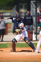 FDU-Florham Devils catcher Diego Espinosa (31) throws down to first base during the first game of a doubleheader against the Farmingdale State Rams on March 15, 2017 at Lake Myrtle Park in Auburndale, Florida.  Farmingdale defeated FDU-Florham 6-3.  (Mike Janes/Four Seam Images)