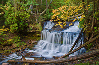 Wagner Falls flows in Autumn at Wagner Falls State Scenic Area in Alger County in Michigan's Upper Peninsula.