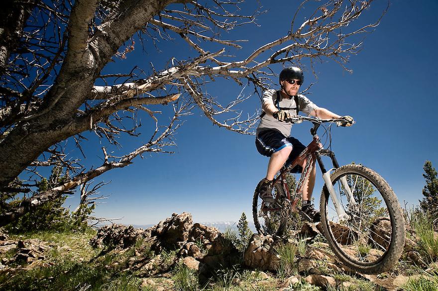 A mountain biker rides the Bangtail Divide Trail near Bozeman, Montana.