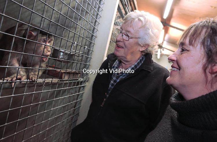 Foto: VidiPhoto<br /> <br /> BARNEVELD - Verzorgers Dick Venema en zijn dochter Anita nemen maandag afscheid van hun apen. Dinsdag komen medewerkers van de stichting AAP uit Almere de laatste acht apen van de Apenhof in Barneveld ophalen. Dat gebeurt nadat de Nederlandse Voedsel- en Warenautoriteit (NVWA) de verblijven vorig afkeurde. Volgens inspecteurs van de NVWA voldoen de verblijven van de dieren niet aan de eisen van deze tijd. Dick en Anita vragen zich echter af hoe het dan mogelijk is dat hun dieren ouder worden dan de apen in de Nederlandse dierentuinen. Volgens hen is er sprake van een 'opzetje' tussen NVWA en de stichting AAP. De Apenhof bestaat al 40 jaar. Jarenlang zorgde diezelfde overheid er voor dat in beslag genomen apen bij de Apenhof terecht kwamen.