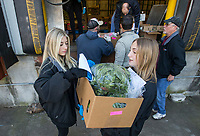 Brooklyn Thompson (left), 14, of Bentonville and Lily Grace Hassebrock, 13, of Springdale volunteer to help carry orders to cars Saturday, March 21, 2020, at Kimball and Thompson Produce in Lowell. The business supplies fresh produce to the food service industry, including public schools, restaurants and hotels. With many of their usual clients closed due to the covid-19 pandemic, owner Chris Thompson (Brooklyn's father) says they are adapting to get their inventory directly to consumers who need it at wholesale prices. Thompson says he is also reaching out to the Northwest Arkansas Food Bank to make sure nothing goes to waste. <br /> <br /> The business began selling to the public Friday morning, and many shelves were already bare Saturday. Thompson says they will be working to keep their inventory updated as they navigate the temporary change to their business model. <br /> <br /> Staff and family members are pitching in to help fill orders curbside while minimizing personal contact and practicing strict sanitizing measures. Customers are asked to place orders ahead of time by calling 479-872-0200 or emailing orders@ktproduce.com. Pickup times are Monday through Saturday from 9 a.m. to 4 p.m., and Sunday from 11 a.m. to 2 p.m. at 305 S. Lincoln St. in Lowell. <br /> <br /> Check out nwaonline.com/200322Daily/ for today's photo gallery.<br /> (NWA Democrat-Gazette/Ben Goff)