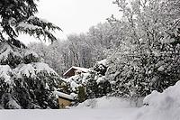 Nevicata.Snowfall.