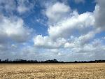 Europa, DEU, Deutschland, Nordrhein Westfalen, NRW, Rheinland, Niederrhein, Krefeld, Wolkenstimmung, Feld, Ackerbau, Kategorien und Themen, Natur, Umwelt, Landschaft, Landschaftsfotos, Landschaftsfotografie, Landschaftsfoto, Wetter, Himmel, Wolken, Wolkenkunde, Wetterbeobachtung, Wetterelemente, Wetterlage, Wetterkunde, Witterung, Witterungsbedingungen, Wettererscheinungen, Meteorologie, Bauernregeln, Wettervorhersage, Wolkenfotografie, Wetterphaenomene, Wolkenklassifikation, Wolkenbilder, Wolkenfoto......[Fuer die Nutzung gelten die jeweils gueltigen Allgemeinen Liefer-und Geschaeftsbedingungen. Nutzung nur gegen Verwendungsmeldung und Nachweis. Download der AGB unter http://www.image-box.com oder werden auf Anfrage zugesendet. Freigabe ist vorher erforderlich. Jede Nutzung des Fotos ist honorarpflichtig gemaess derzeit gueltiger MFM Liste - Kontakt, Uwe Schmid-Fotografie, Duisburg, Tel. (+49).2065.677997, schmid.uwe@onlinehome.de, www.image-box.com]