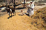Israel, Galilee, Nazareth Village, recreating Nazareth in the time of Jesus, the threshing floor