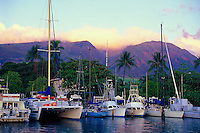 Lahaina harbor and West Maui mountains with boats docked