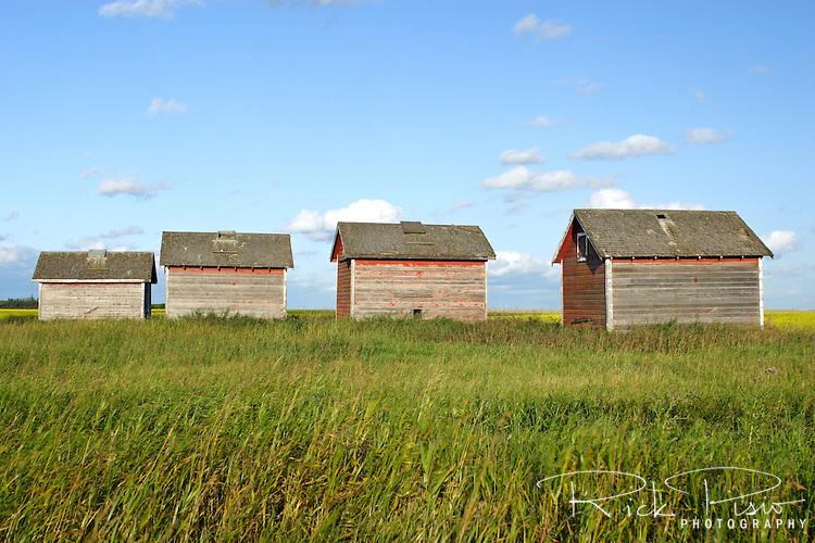 Granaries near Quill Lake, Saskatchewan