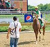 Jazzysdudeaintrude winning at Delaware Park on 9/9/15