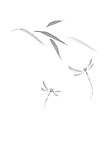 Beautiful delicate design of Oriental Zen ink painting artwork. Two dragonflies and leaves. Asian style illustration on white background.
