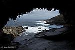 Ile Kangourou au sud d'Adelaide..Admiral Arch à la pointe du Couedic, au sud est de l'ile.Territoire de l'otarie  a fourrure de Nouvelle-Zelande (New Zealand fur seal).