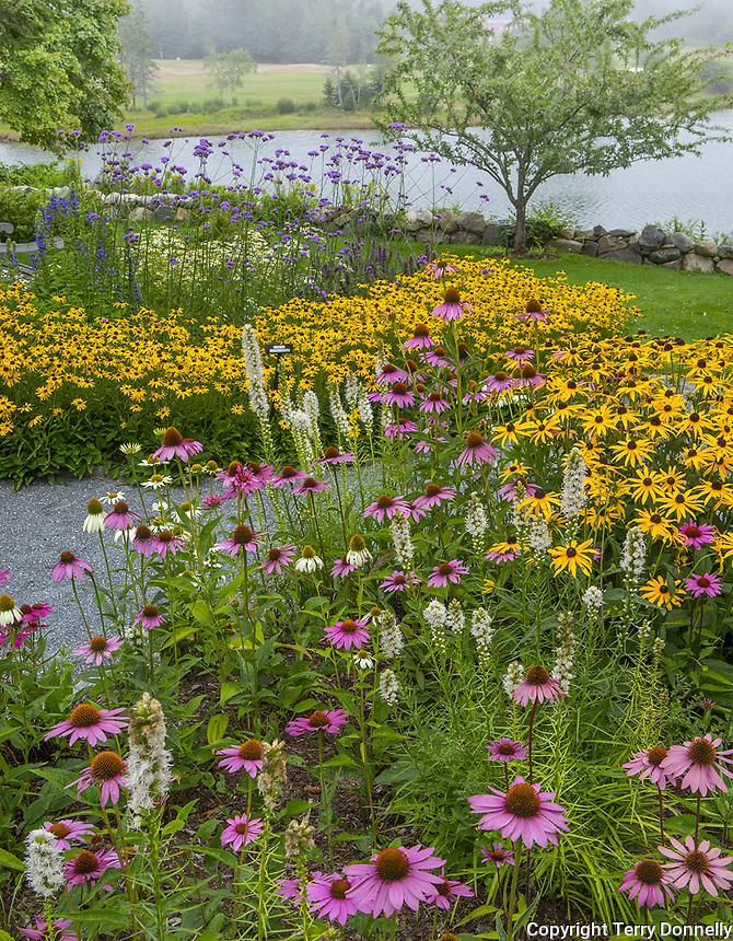 Southwest Harbor, Maine: U003cbr /u003e Flowering Gardens And Pathways In The  Charlotte