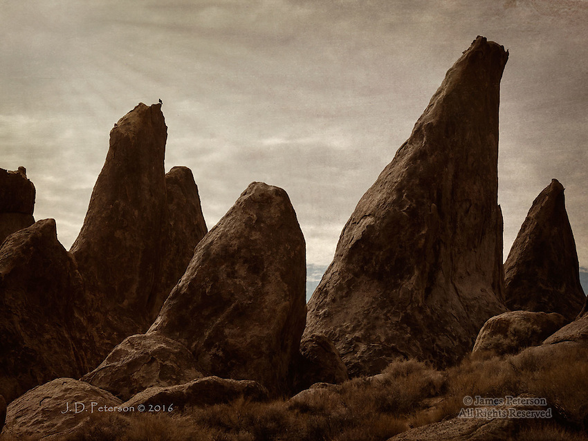 Raven and Sunbeams, Alabama Hills, California