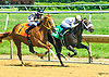 Cheese On winning at Delaware Park on 7/15/17