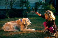 Young girl playing with her old golden retriever.