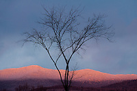 Winter view of Green Mountains from, Brandon, Vermont.
