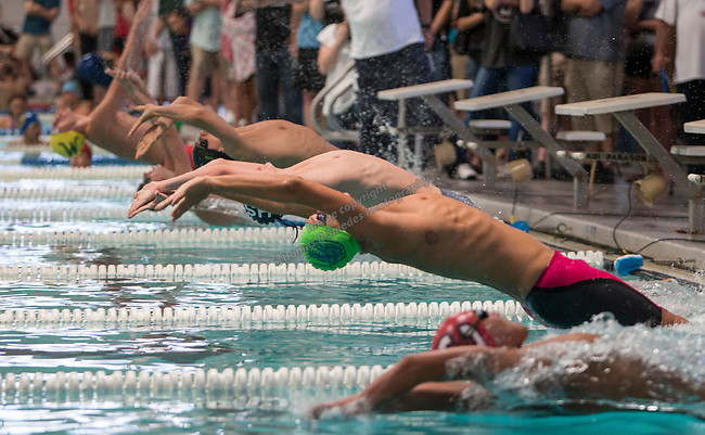The start of the boys 4A 200 yard medley relay during the State Swimming Meet in Carson City on Saturday, May 20, 2017.