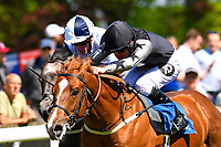 Winner of The Penang Turf Club Malaysia Novice Stakes (Plus 10 Race) (Class 4) Rumble in the Jungle black cap ridden by Tom Queally and trained by Richard Spencer  during Afternoon Racing at Salisbury Racecourse on 17th May 2018