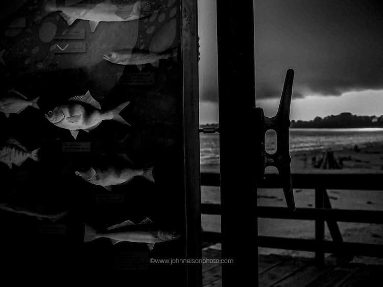 Sign of fish, Seacliff State Beach, Aptos, CA