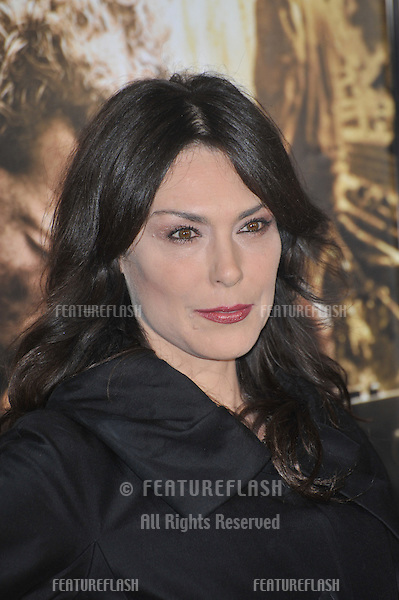 "Michelle Forbes at the premiere of HBO miniseries ""The Pacific"" at Grauman's Chinese Theatre, Hollywood..February 24, 2010  Los Angeles, CA.Picture: Paul Smith / Featureflash"