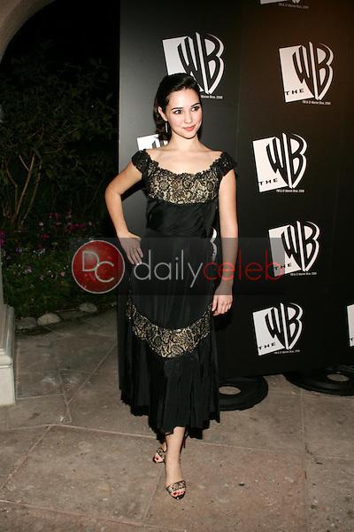 Laura Breckenridge<br />at the WB All Star Party. Ritz Carlton Huntington Hotel, Pasadena, CA. 01-16-06<br />Dave Edwards/DailyCeleb.com 818-249-4998