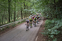 in the forest<br /> <br /> Ster ZLM Tour (2.1)<br /> Stage 4: Hotel Verviers &gt; La Gileppe (Jalhay)(190km)