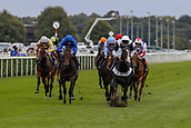 15th September 2017, Doncaster Racecourse, Doncaster, England; The William Hill St Ledger Festival, Gentleman's Day; Adam Kirby on Tip Two Win wins the The Weatherby's Bank Foreign Exchange Flying Scotsman