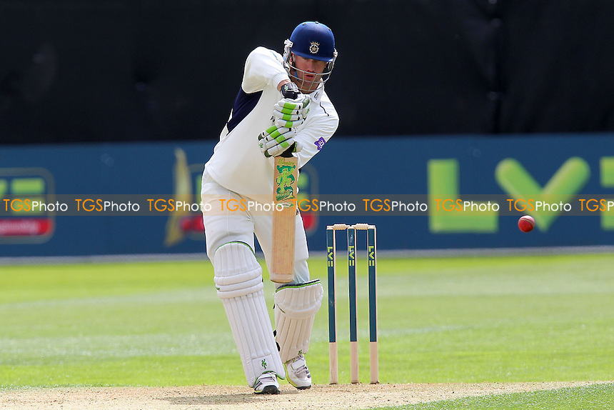 Sean Ervine in batting action for Hampshire - Essex CCC vs Hampshire CCC - LV County Championship Division Two Cricket at the Essex County Ground, Chelmsford - 29/04/13 - MANDATORY CREDIT: Gavin Ellis/TGSPHOTO - Self billing applies where appropriate - 0845 094 6026 - contact@tgsphoto.co.uk - NO UNPAID USE.