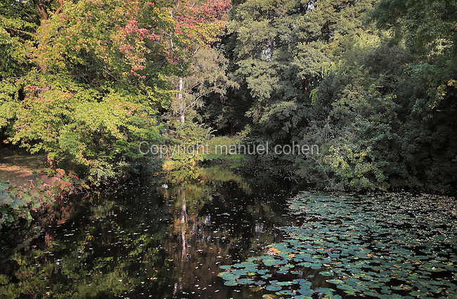 Pond with lily pads and trees on the Luiseninsel, an island garden in the Grosser Tiergarten park, Mitte, Berlin, Germany. The island is named after the wife of King Frederick William III of Prussia, Queen Louise of Mecklenburg-Strelitz, who spent time here in the early 19th century. The Tiergarten is the second largest park in Berlin and third largest in Germany. Picture by Manuel Cohen